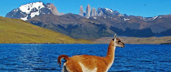 Natural Patagonia
